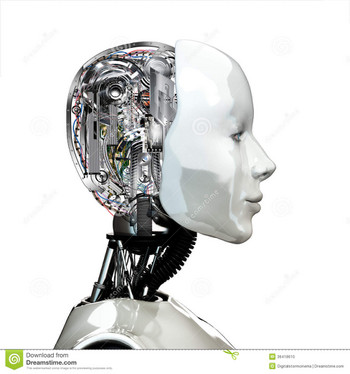Robotwomanheadinternaltechnologysid